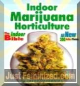 Books The Indoor Horticulture Marijuana Bible Cheap Price